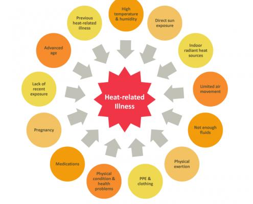 Heat Stress Exposure