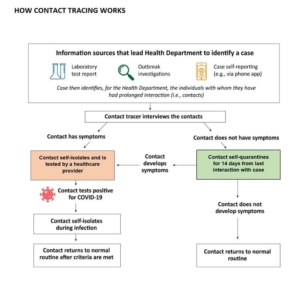 COVID Resources Diagram How Contact Tracing Works